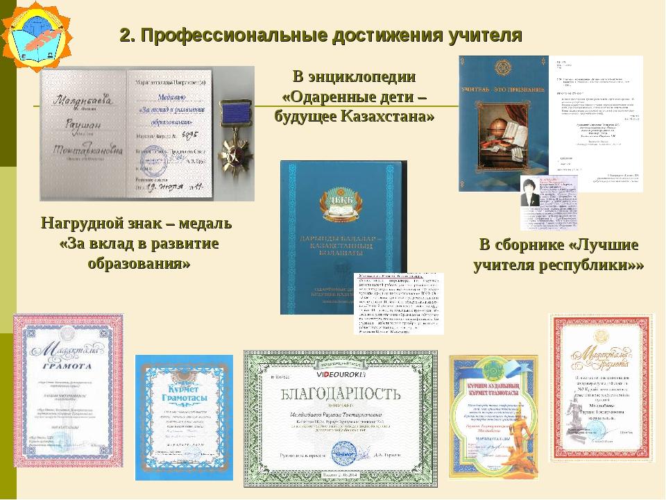 2. Профессиональные достижения учителя Нагрудной знак – медаль «За вклад в ра...