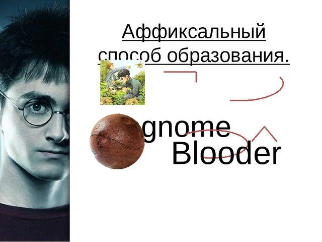 Аффиксальный способ образования. Degnome Blooder