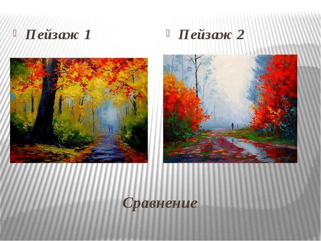 Сравнение Пейзаж 1 Пейзаж 2