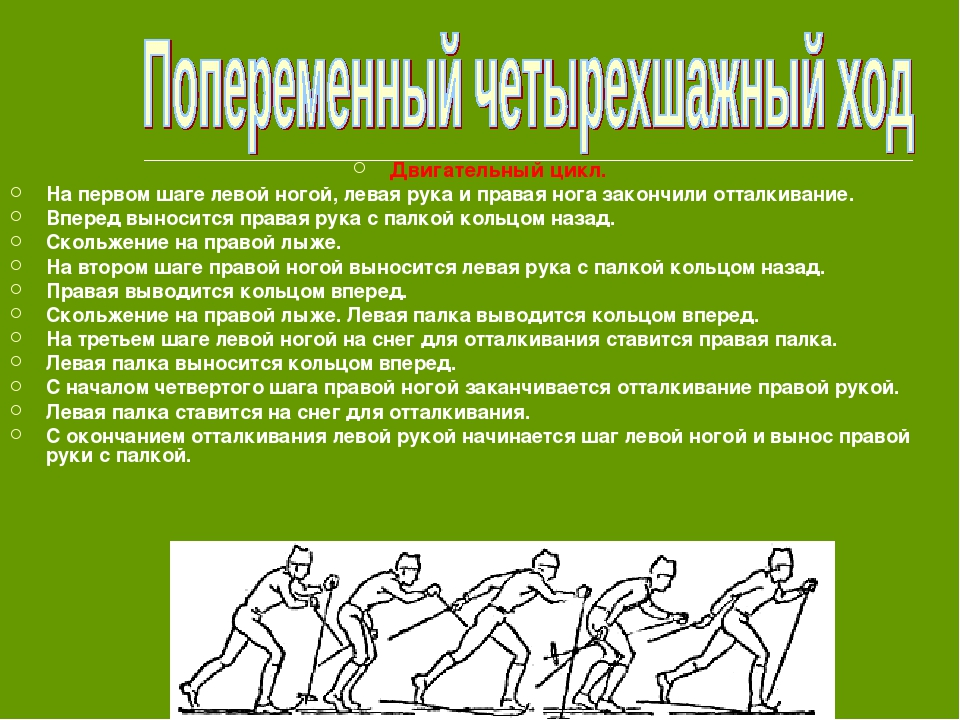 Двигательный цикл. На первом шаге левой ногой, левая рука и правая нога закон...