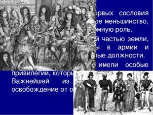Огнестрельное оружие и наёмные армии снизили роль дворян в военном деле. В б