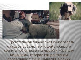 Трогательная лирическая киноповесть осудьбе собаки, теряющей любимого хозяи
