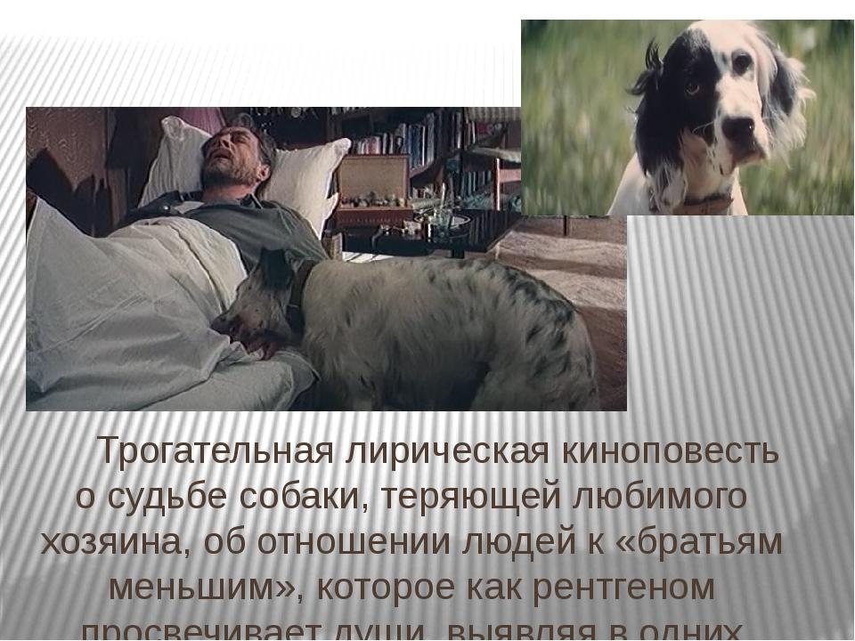 Трогательная лирическая киноповесть осудьбе собаки, теряющей любимого хозяи...