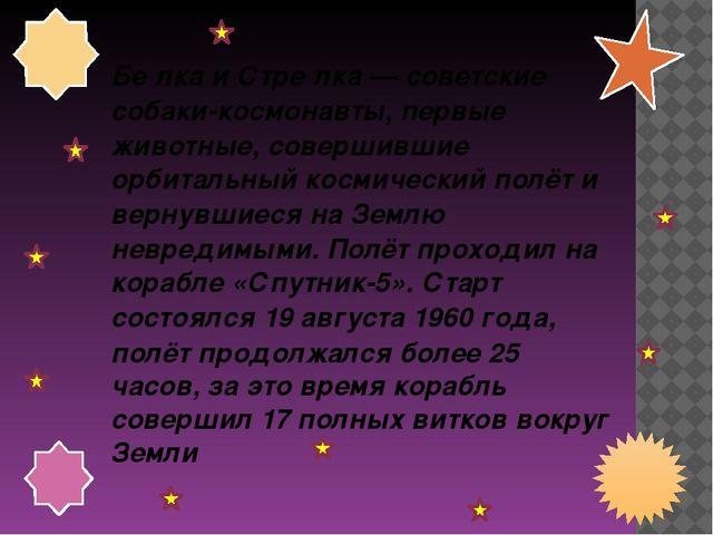 Бе́лка и Стре́лка— советские собаки-космонавты, первые животные, совершившие...