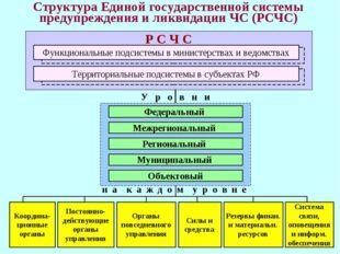 * Структура Единой государственной системы предупреждения и ликвидации ЧС (РС