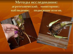 Методы исследования: агротехнический; мониторинг; наблюдение; подведение итог