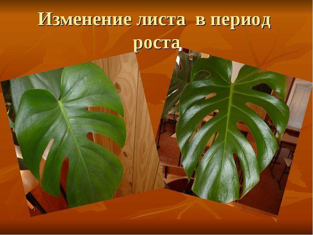 Изменение листа в период роста