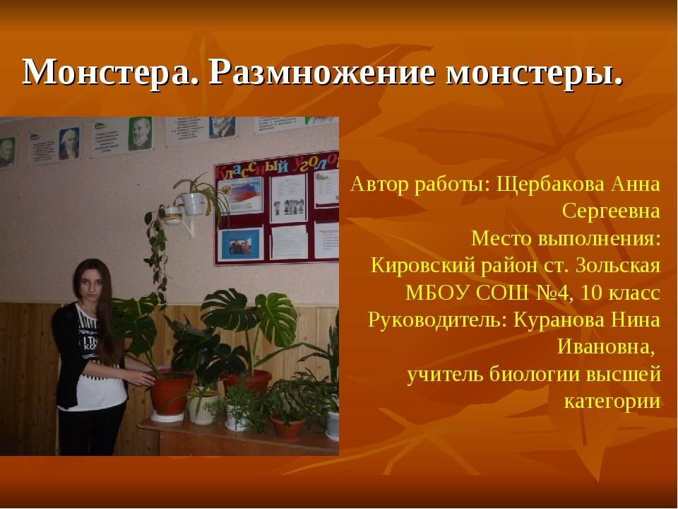 Монстера. Размножение монстеры. Автор работы: Щербакова Анна Сергеевна Место...