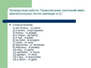 """Проверочная работа """"Правописание окончаний имён прилагательных после шипящих"""