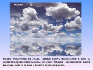 Облака образуются на земле. Теплый воздух поднимается в небо и, достигая опре