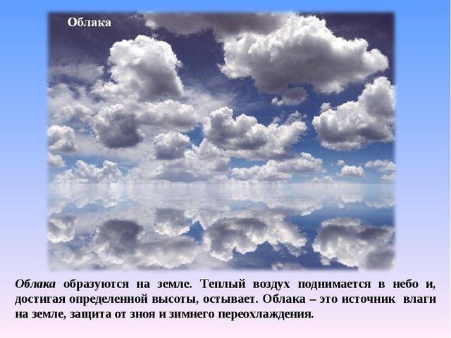 Облака образуются на земле. Теплый воздух поднимается в небо и, достигая опре...