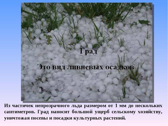 Из частичек непрозрачного льда размером от 1 мм до нескольких сантиметров. Гр...