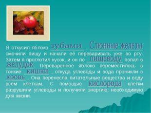 Я откусил яблоко ____________ . ___________________ смочили пищу и начали её