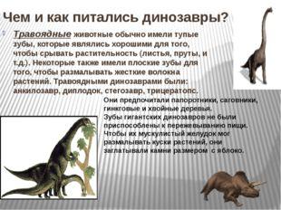 Чем и как питались динозавры? Травоядные животные обычно имели тупые зубы, ко