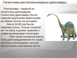 Гигантские растительноядные динозавры. Платеозавр - первый из гигантских дино