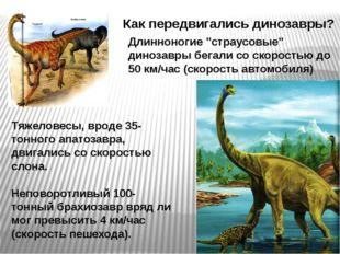"""Как передвигались динозавры? Длинноногие """"страусовые"""" динозавры бегали со ско"""
