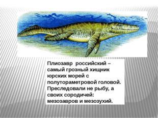 Плиозавр российский – самый грозный хищник юрских морей с полутораметровой го