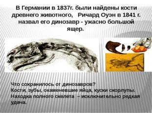 В Германии в 1837г. были найдены кости древнего животного, Ричард Оуэн в 184
