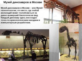 Музей динозавров в Москве Музей динозавров в Москве – или Музей палеонтологии