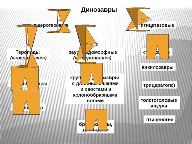 Динозавры ящеротазовые птицетазовые Тероподы («звероногие») зауроподоморфные...