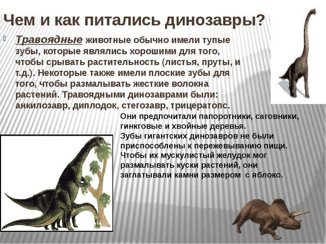Чем и как питались динозавры? Травоядные животные обычно имели тупые зубы, ко...