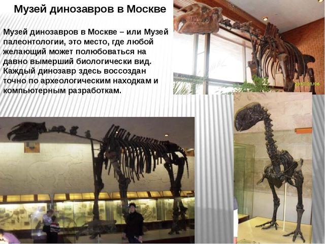 Музей динозавров в Москве Музей динозавров в Москве – или Музей палеонтологии...
