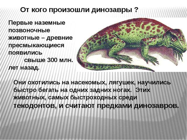 От кого произошли динозавры ? Первые наземные позвоночные животные – древние...