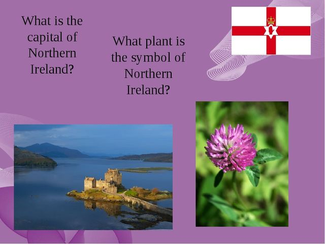 What is the capital of Northern Ireland? What plant is the symbol of Northern...