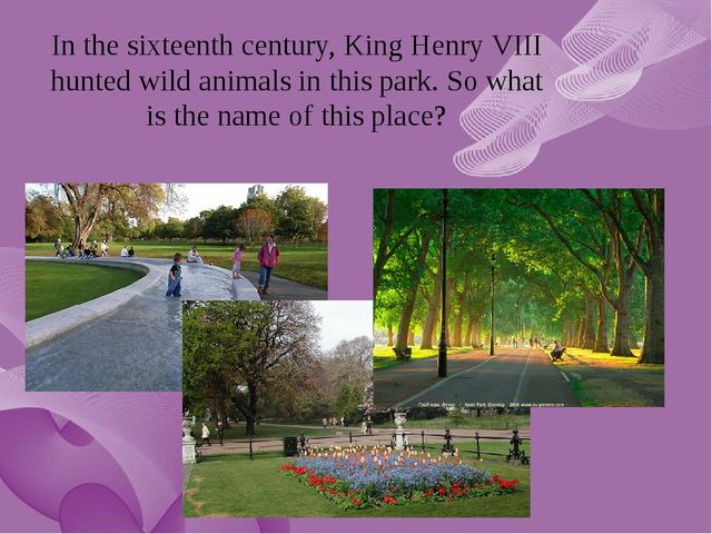 In the sixteenth century, King Henry VIII hunted wild animals in this park. S...