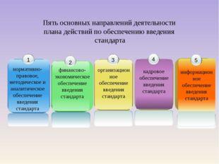 Пять основных направлений деятельности плана действий по обеспечению введения