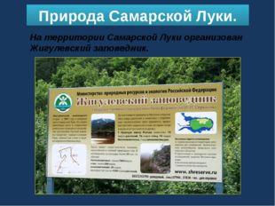 Природа Самарской Луки. На территории Самарской Луки организован Жигулевский