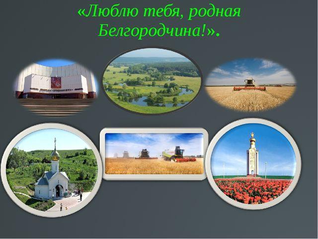«Люблю тебя, родная Белгородчина!».
