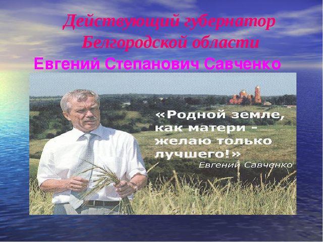 Действующий губернатор Белгородской области Евгений Степанович Савченко