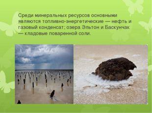 Среди минеральных ресурсов основными являются топливно-энергетические — нефть