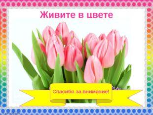 Живите в цвете Спасибо за внимание!