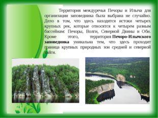 Территория междуречья Печоры и Илыча для организации заповедника была выбран