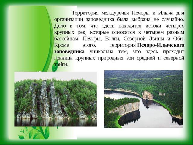 Территория междуречья Печоры и Илыча для организации заповедника была выбран...