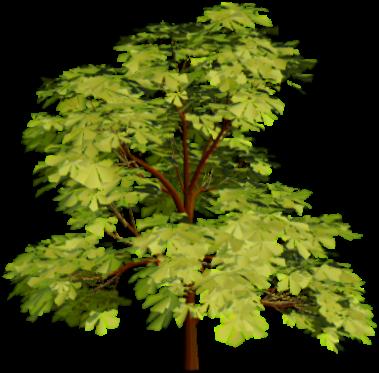 Росписи, дерево картинка анимация для детей