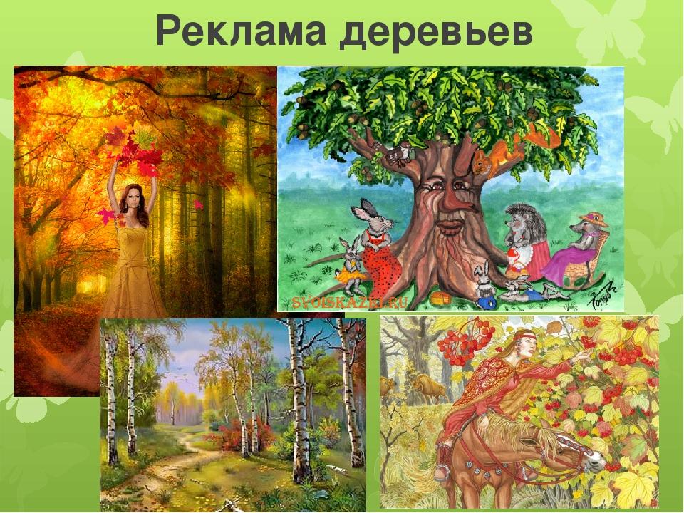 Реклама деревьев