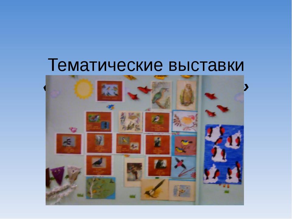 Тематические выставки «Птицы наши друзья»