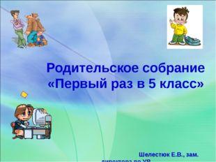 Родительское собрание «Первый раз в 5 класс» Шелестюк Е.В., зам. директора п