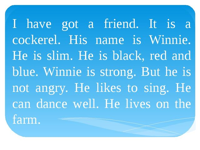 I have got a friend. It is a cockerel. His name is Winnie. He is slim. He is...