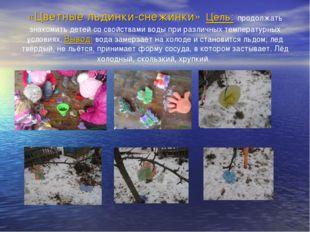 «Цветные льдинки-снежинки» Цель: продолжать знакомить детей со свойствами вод