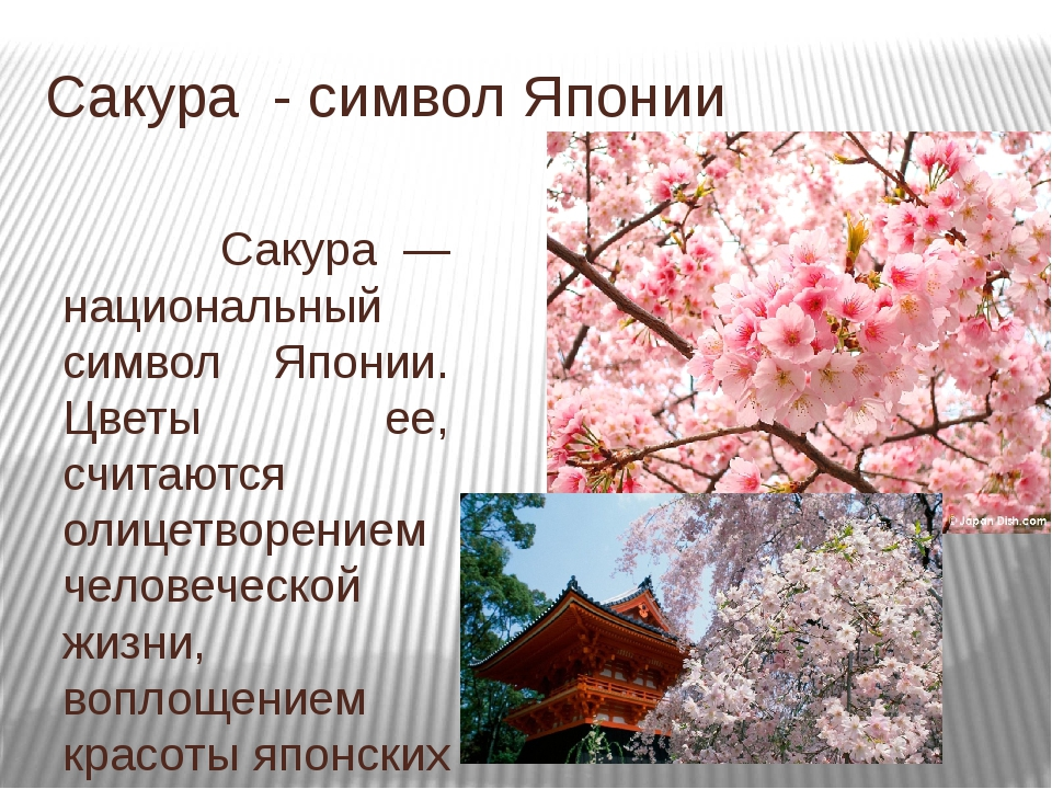 Картинки японии и их названия