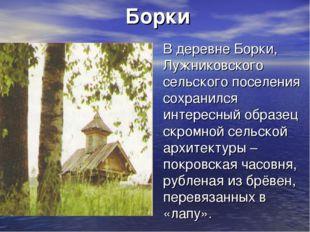 Борки В деревне Борки, Лужниковского сельского поселения сохранился интересны