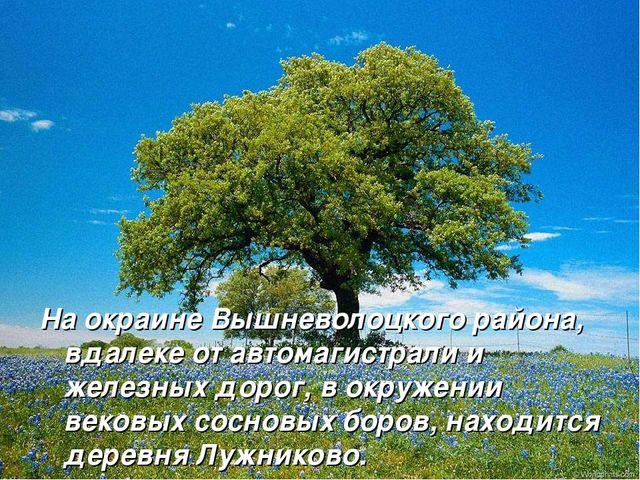 На окраине Вышневолоцкого района, вдалеке от автомагистрали и железных дорог,...