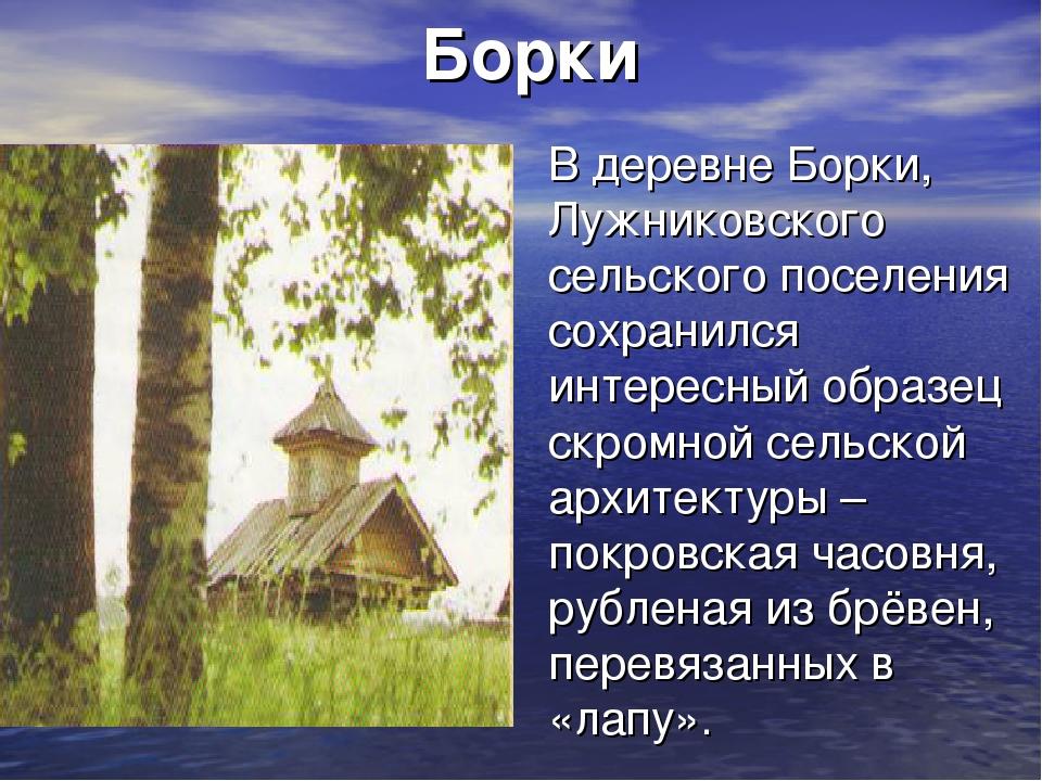 Борки В деревне Борки, Лужниковского сельского поселения сохранился интересны...