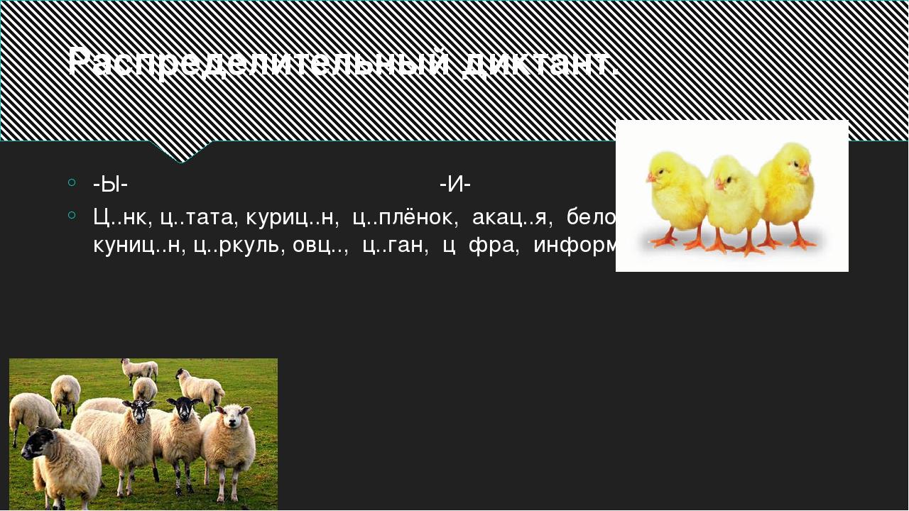 Распределительный диктант. -Ы- -И- Ц..нк, ц..тата, куриц..н, ц..плёнок, акац....