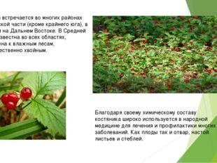 В России встречается во многих районах европейской части (кроме крайнего юга)