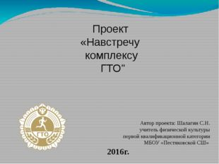 Проект Автор проекта: Шалагин С.Н. учитель физической культуры первой квалифи